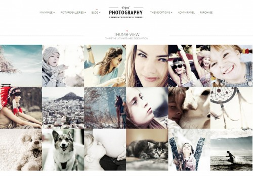 17 Best Photography Premium WordPress Themes - InspirationKeys