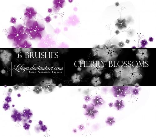 6 Cherry Blossoms PS Brushes