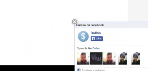 Cool Facebook Widget